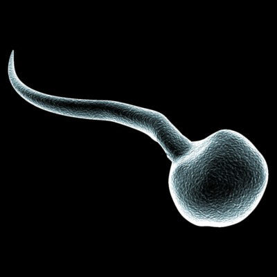 Big is sperm bad for you