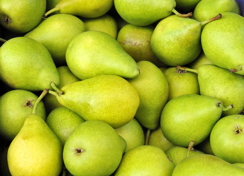Big are pears bad for you