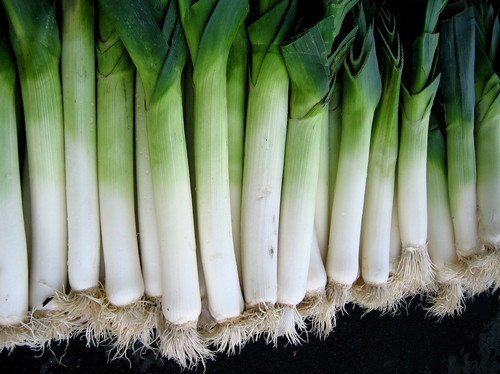 Big is the leek bad for you