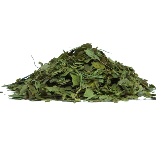 Big is green tea bad for you 2