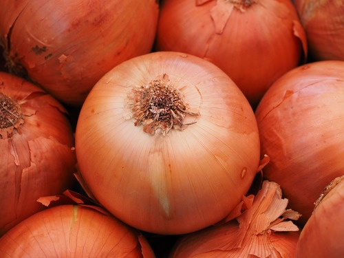 Big are onions bad for you.