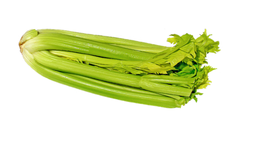 Big is celery bad for you