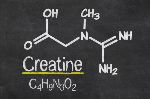 Big is creatine bad for you 2