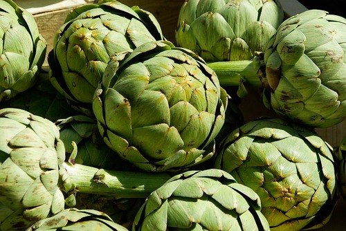 Big are artichokes bad for you