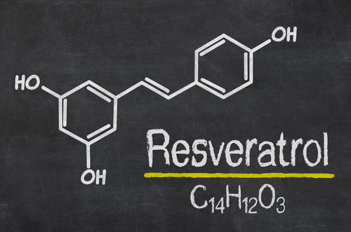Big is resveratrol bad for you