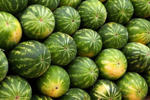 Big is watermelon bad for you