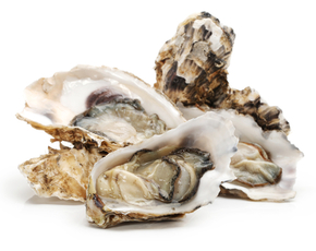 Thumb are oysters bad for you