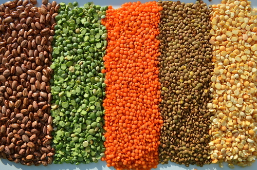 Big are lentils bad for you.