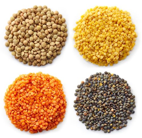 Big are lentils bad for you