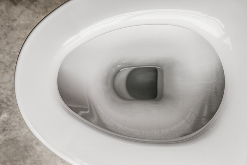 Big is toilet water bad for you