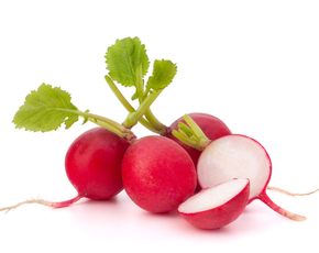 Thumb are radishes bad for you