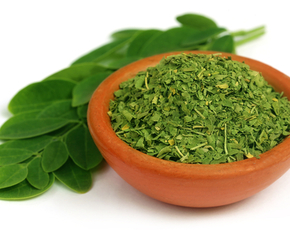 Thumb is moringa bad for you