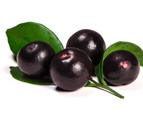 Thumb are acai berries bad for you.