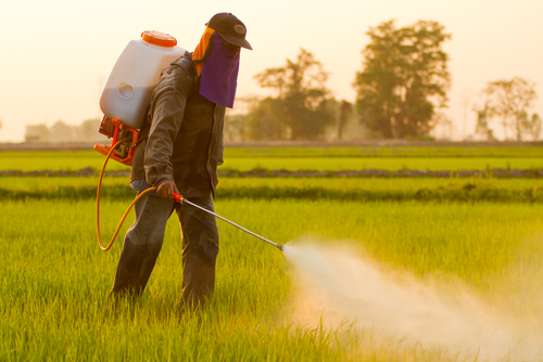 Big are pesticides bad for you