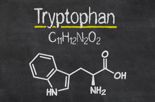 Big is tryptophan bad for you