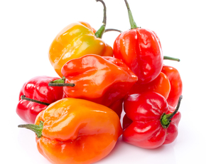 Thumb are habanero peppers bad for you